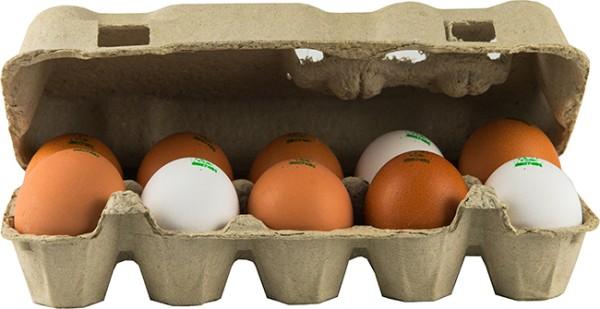 Löffler Eier aus Freilandhaltung